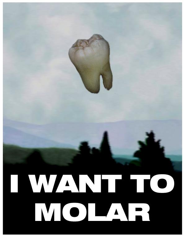 i Want to Molar