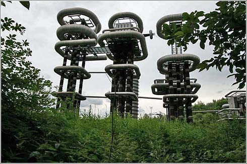 Curiosa instalacion en un bosque ruso