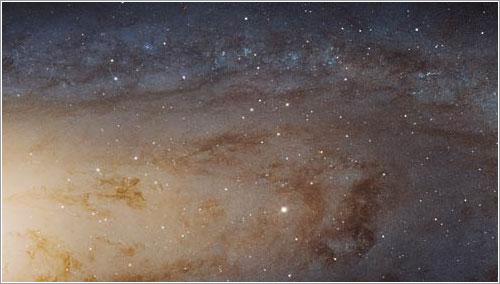 ¡Está llena de estrellas!