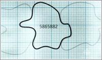 Una multiplicación vista por Daniel Tammet