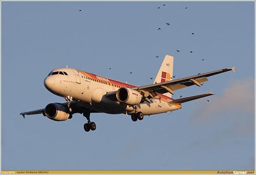 EC-HGT aterrizando en Barajas