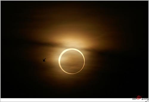 Solar-Eclipse-260109-004 por M. R. Taufik