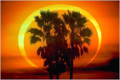 Eclipse anular de Sol de 1992 por Dennis L. Mammana (TWAN)