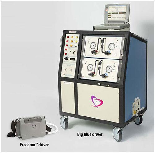Freedom Portable Driver y Big BlueDriver