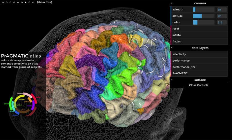 Mapa semántico del cerebro en línea