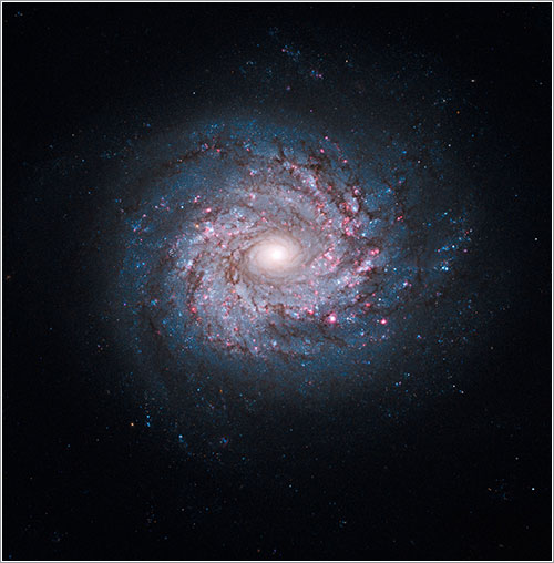 Face-on Spiral Galaxy NGC 3982 - NASA, ESA, and the Hubble Heritage Team (STScI/AURA) - A. Riess (STScI)