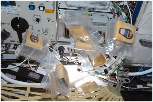 Queso en la ISS