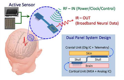 Sensor BrainGate