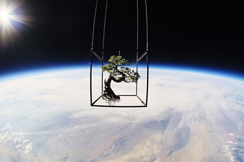 Shiki I x Space, 2014