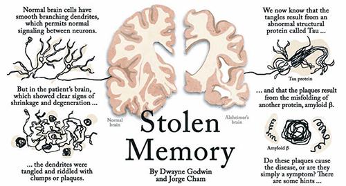 Stolen memory