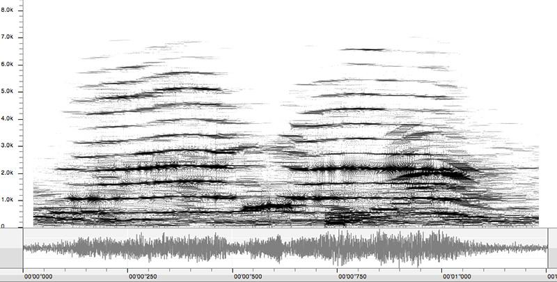 Espectro de la voz de una niña
