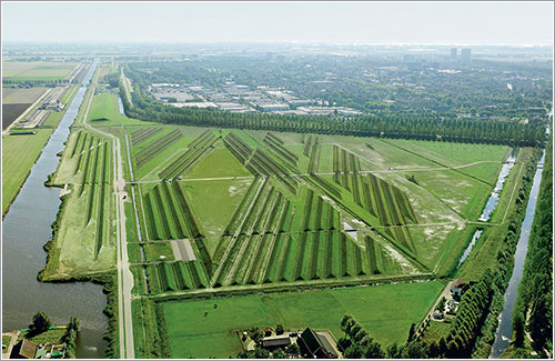 Las crestas anti ruido de Schiphol