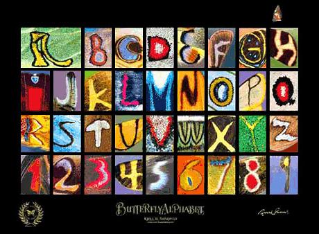 Alfabeto en alas de mariposas