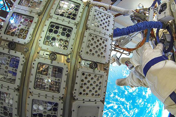 Algas en el espacio esa