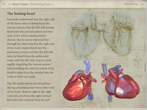 anatomia-da-vinci-ipad-2.jpg
