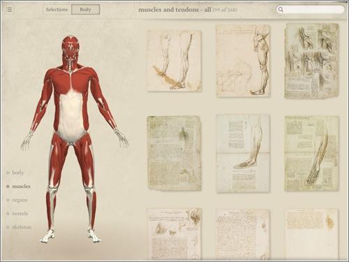 anatomia-da-vinci-ipad-3.jpg