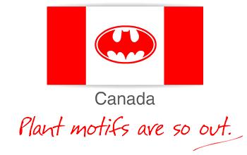 Banderas de los Países, con comentarios