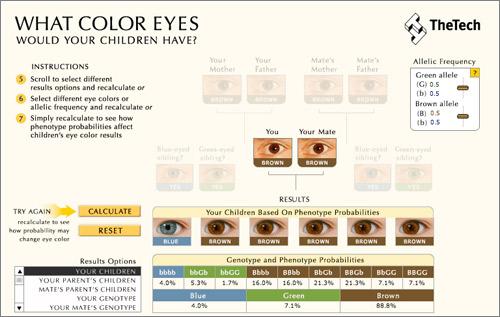 Calculadora-Color-Ojos-Hijos