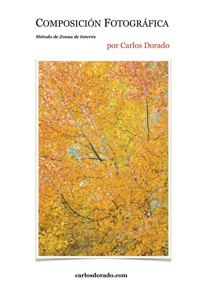 Composición - Carlos Dorado