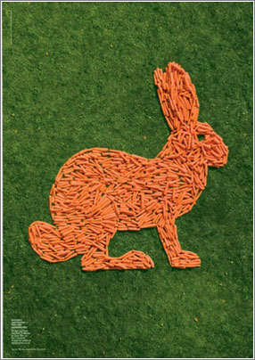 Conejo-Zanahorias