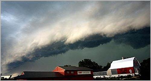 Una tormenta «Derecho» / by «About Derechos»