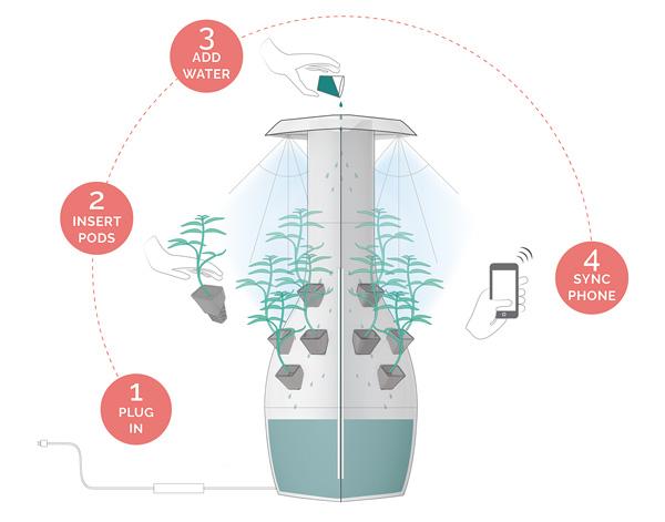 Maceta-Conectada-Root-Plantas