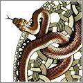 Serpientes, detalle