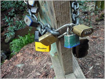 Candados unidos unos a otros para proteger puertas compartidas
