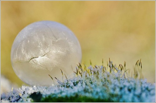 pompas-jabon-congeladas-kelly-images-1.jpg
