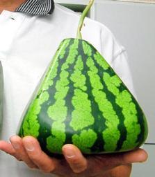Sandías Piramidales, todo un avance en formatos alimenticios