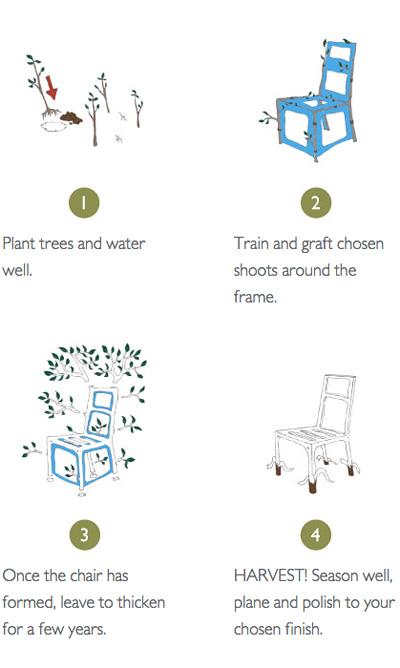 Sillas-Cultivadas-Plantas