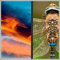 Talleres de fotografía de naturaleza