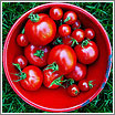 Foto:  Tomato in a Square (CC) Jacki-dee