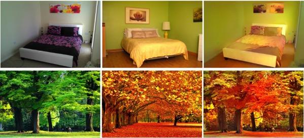 Transferencia color entre imagenes 1
