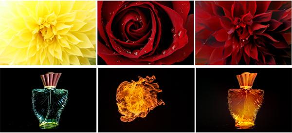 Transferencia color entre imagenes 2