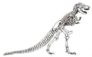 Trex-Jurassic