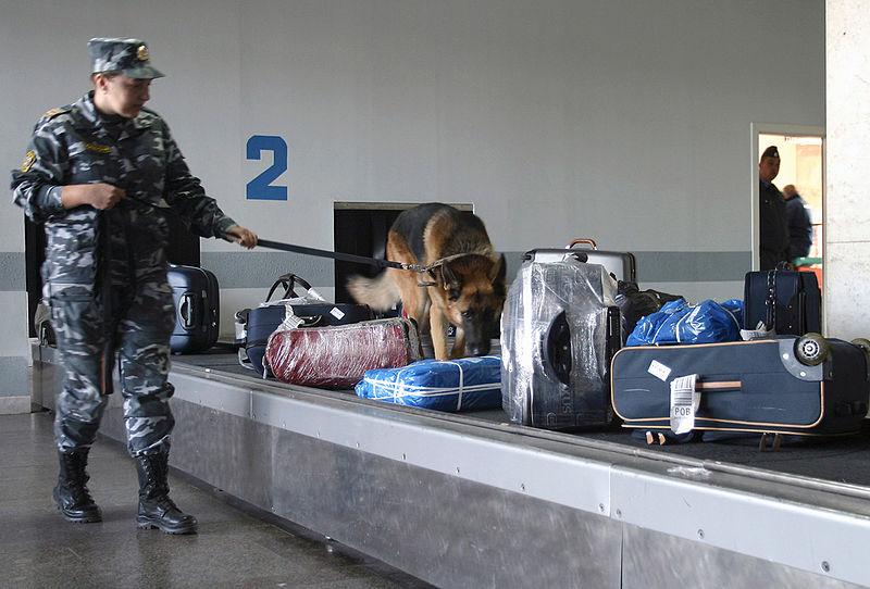 Comprobación de equipaje facturado en Rostov