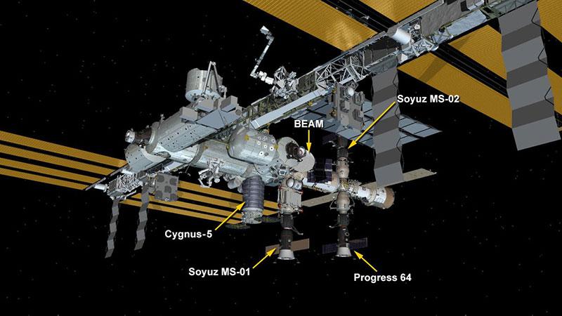 La Cygnus OA–6 y compañía