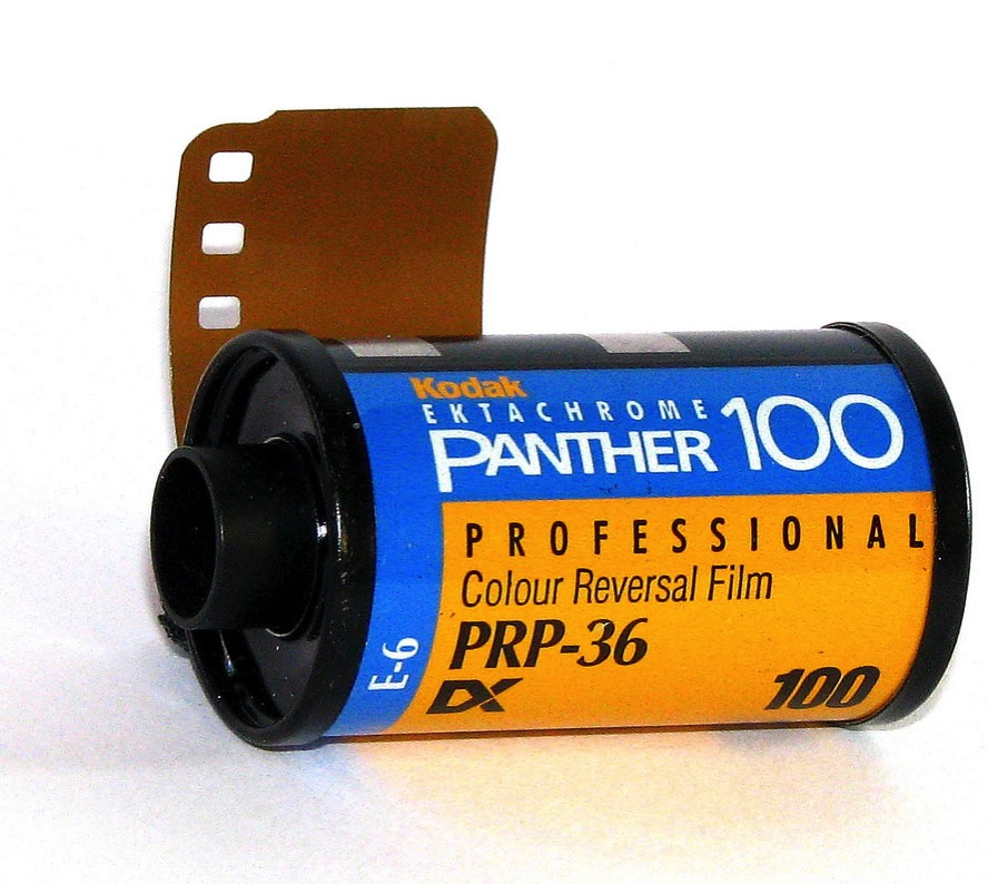Ektachrome Panther