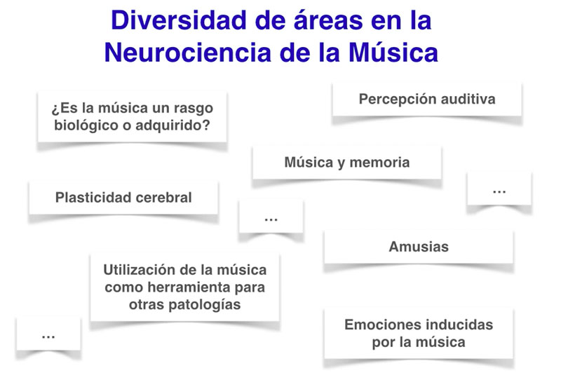 Áreas en la neurociencia de la música